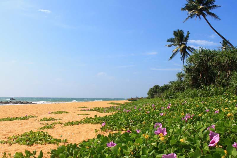 21-пляж-додандувы-фото