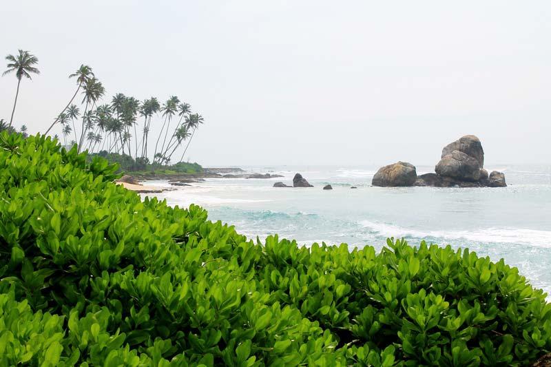 3-дикие-пляжи-шри-ланка