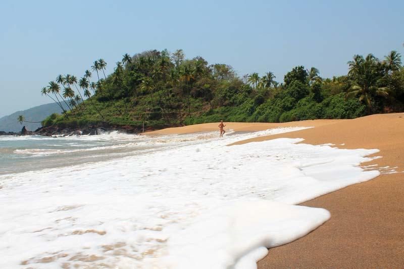 11-goa-kola-beach-photo