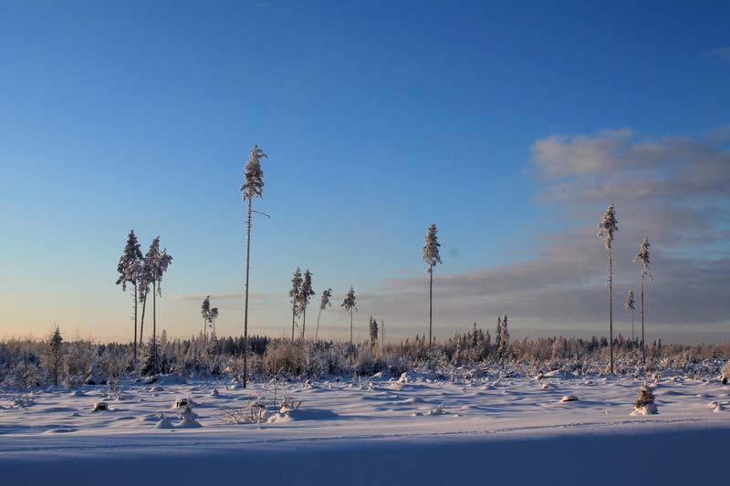 41а-зима-на-перешейке-фото