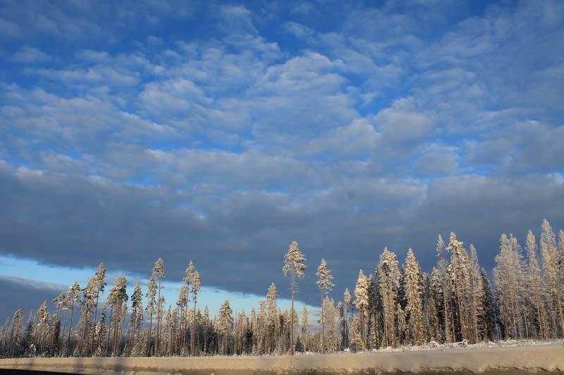 42-карельский-перешеек-зимой-фото