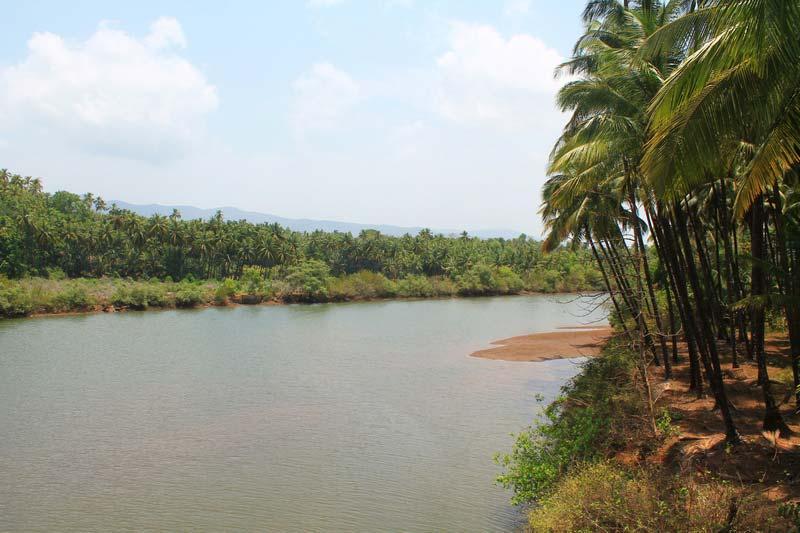 1-палолем-река-фото