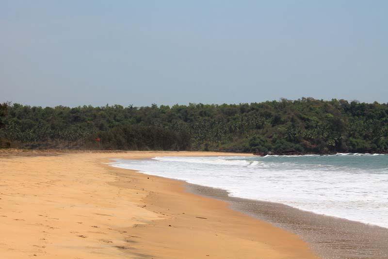 11-пляж-с-черепахами-гоа