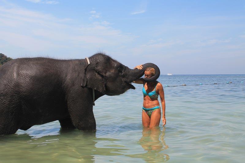 13-поцелуй-со-слоном