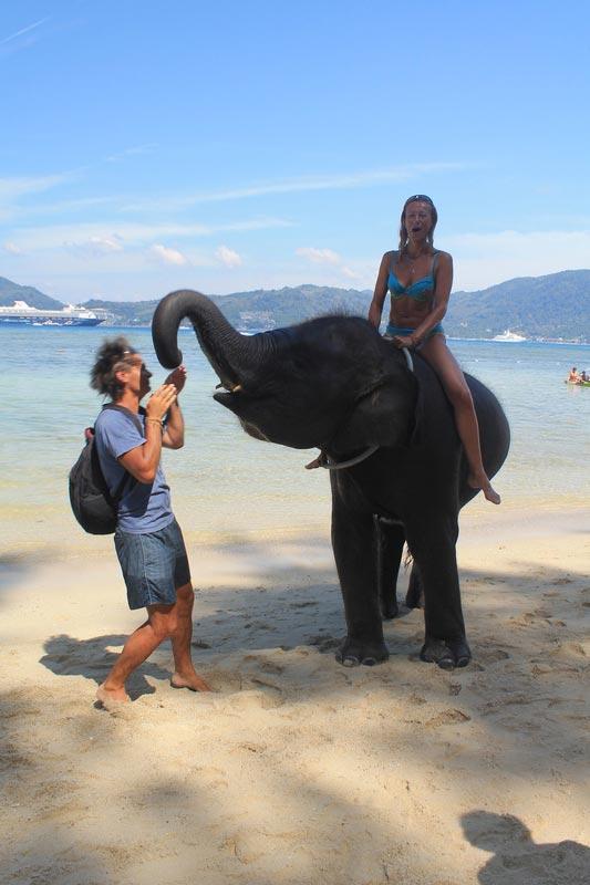 18-слоны-пляж-три-транг