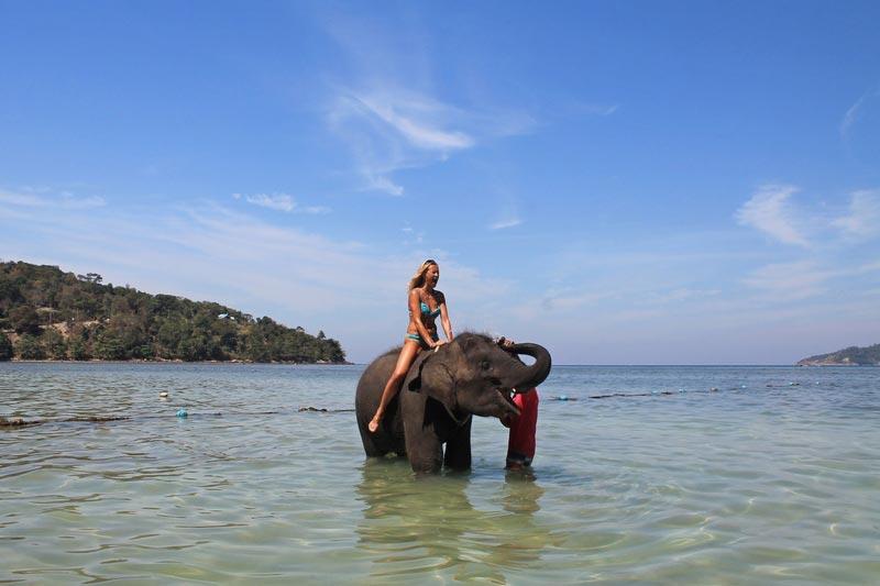 6-купание-в-море-на-слоне