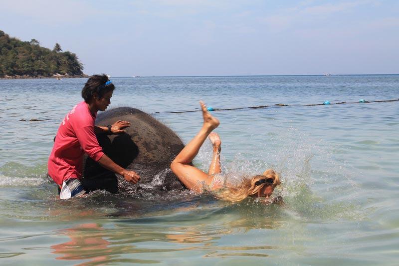 8-купание-со-слоном-пхукет
