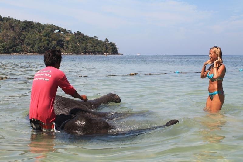 9-купание-слона-в-море