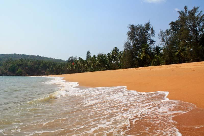 гоа-пляж-полем-фото