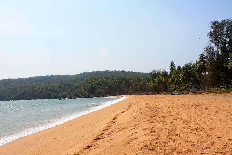пляж-полем