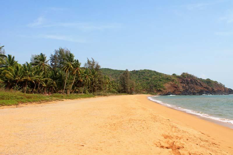 фото-пляж-полем