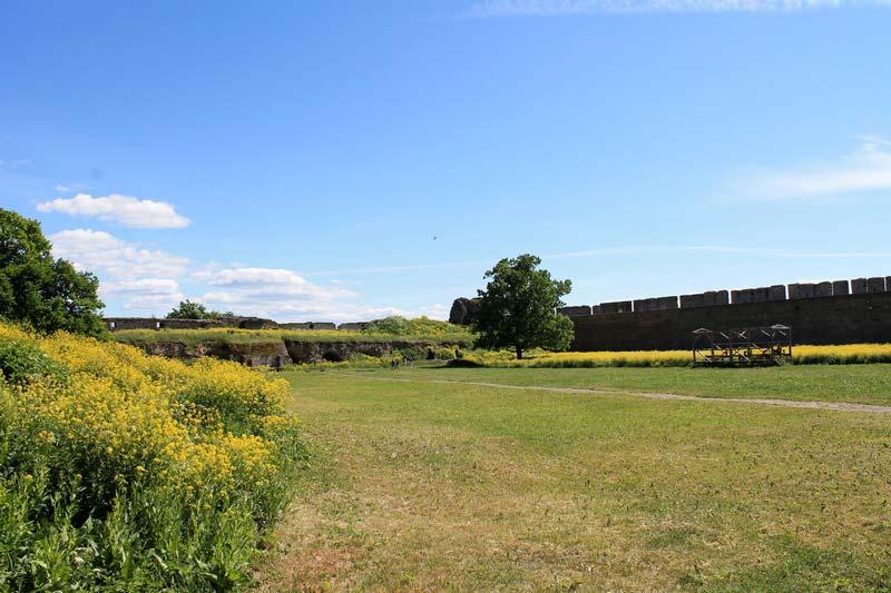 16-крепость-ивангород-фото
