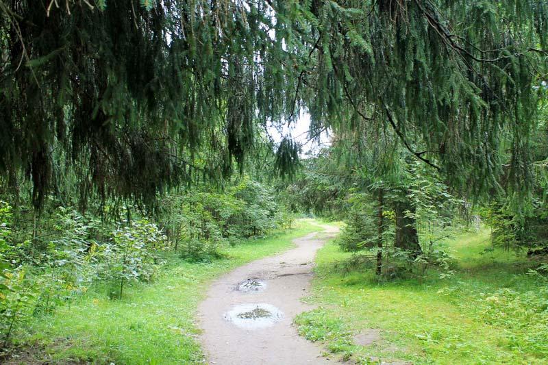 6-rozhdestveno-park