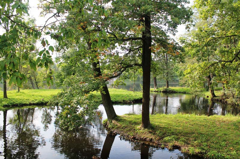 10-gatchina-vodnyj-labirint