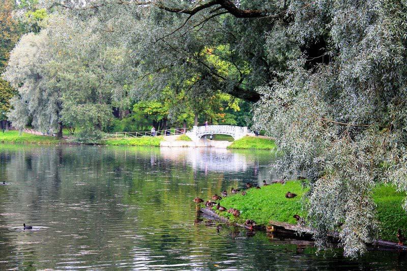 8-ivy-nad-vodoj-gatchinskij-dvorec