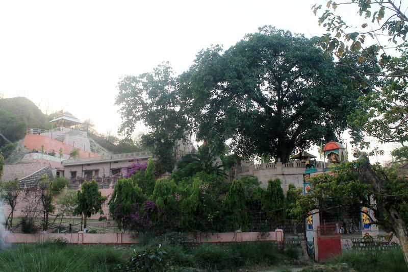 3-Сурешвари-Деви-Sureshwari-Devi-Templ