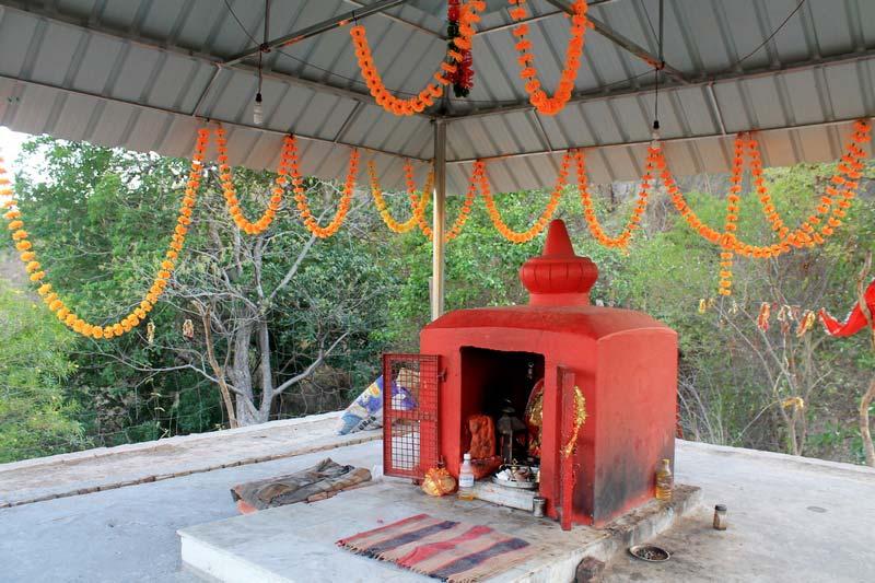 7-Сурешвари-Деви-Sureshwari-Devi-Templ