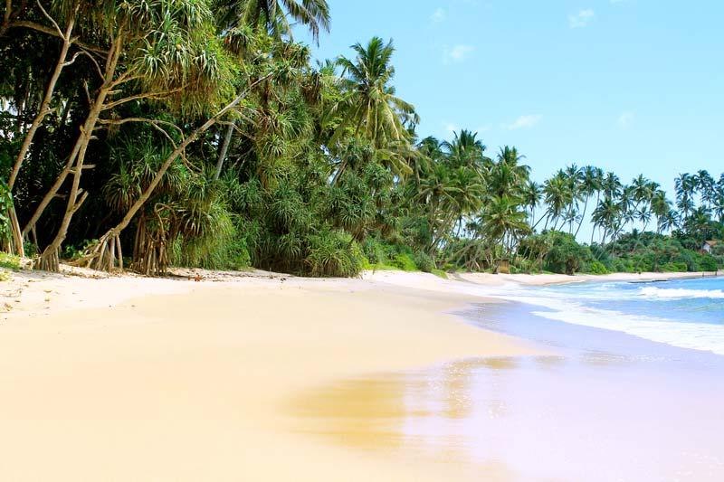 6-пляж-диквелла