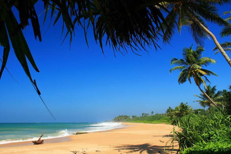 17 Induruwa beach