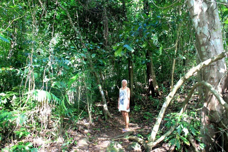 11-тайские-джунгли