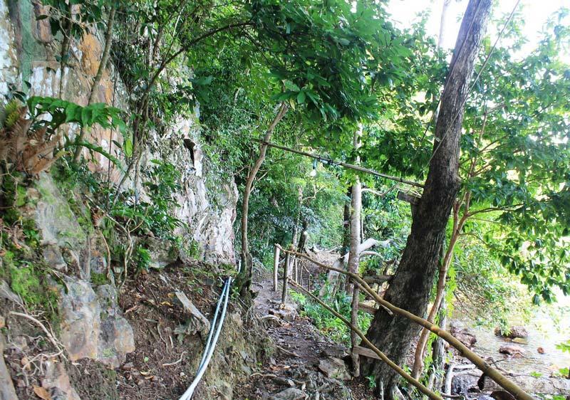 24-ко-вай-джунгли-тропа