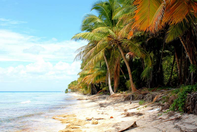 33-саона-пляж