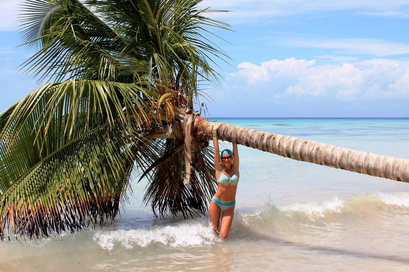 34-пальма-в-воде-фото