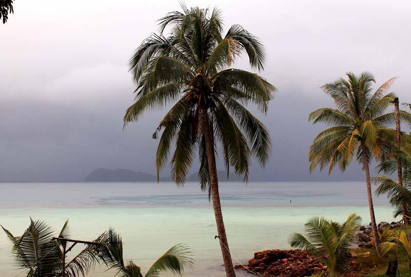 40-дождь-в-азии-фото