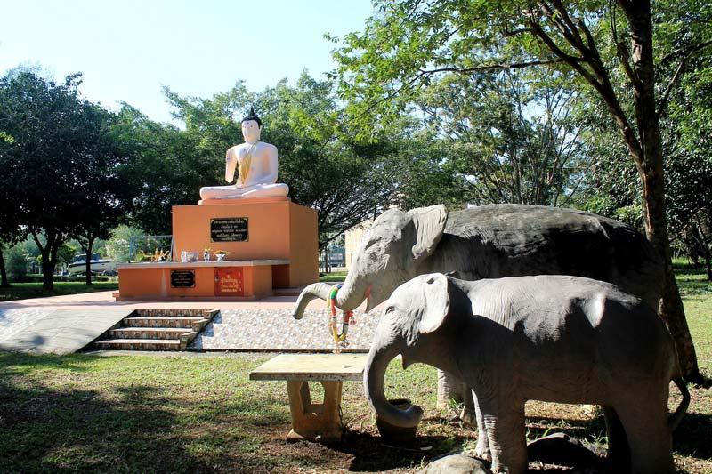12-Wat-Khlong-Son