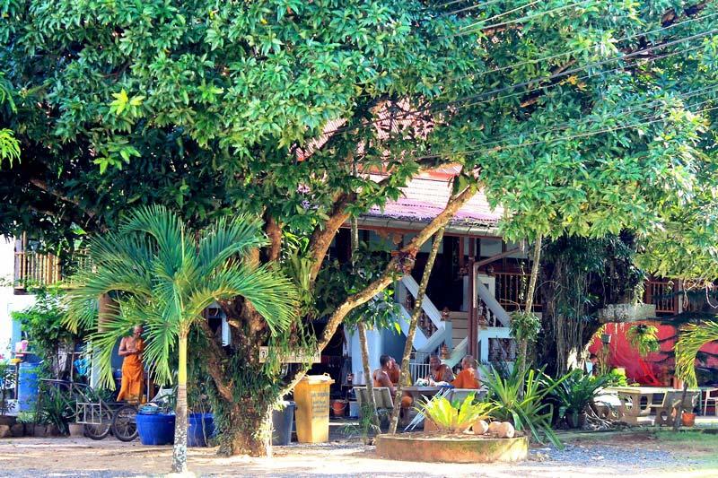15-Wat-Khlong-Son