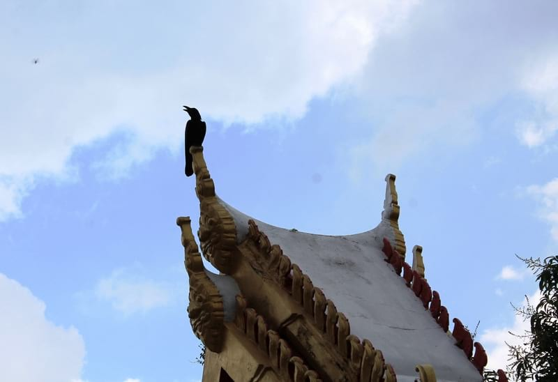 11 Wat Chakrawat