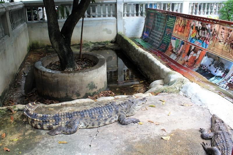 4б Wat Chakrawat