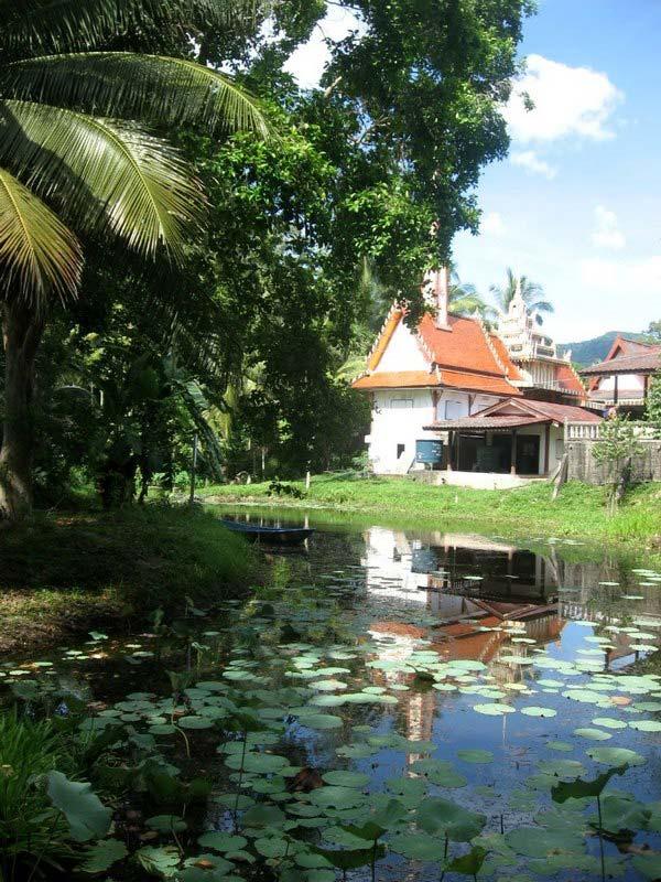 2-herbal-sauna-Phangan