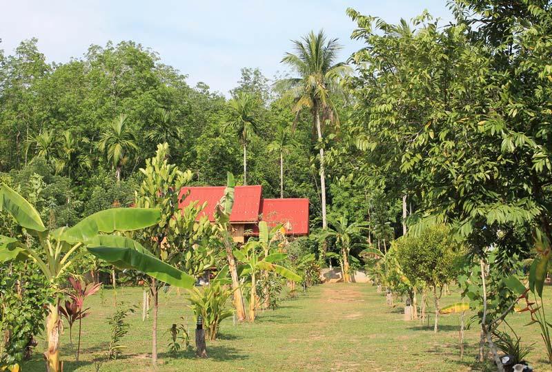 Nadia Resort