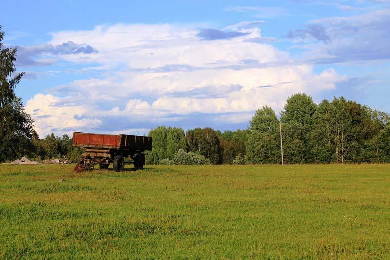 ферма радости