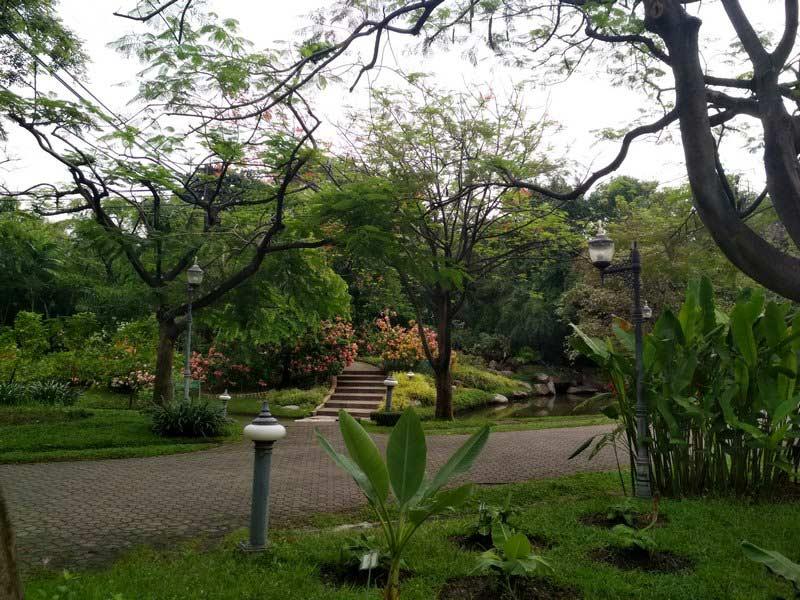 парк-Чатучак