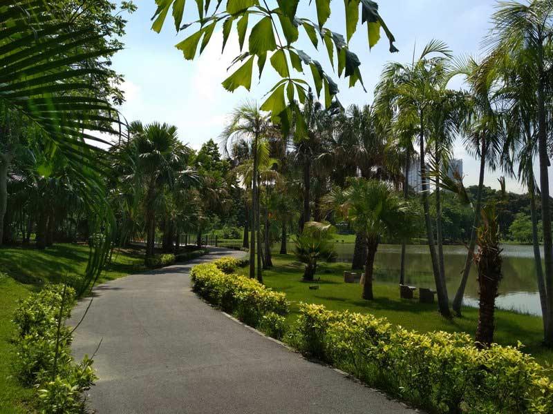 Парк-Чатучак-в-Бангкоке