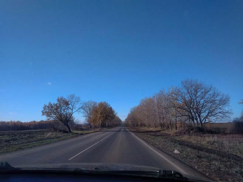 дорога-в-Коренную-Пустынь