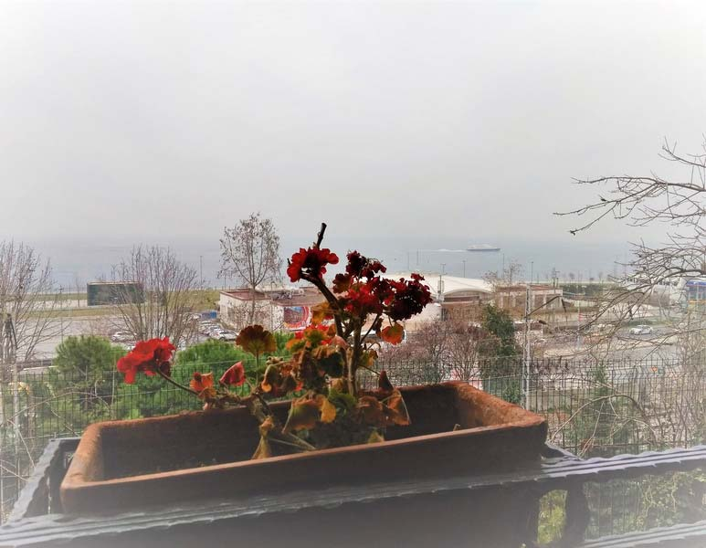 Стамбул-отель-с-видом-на-Босфор