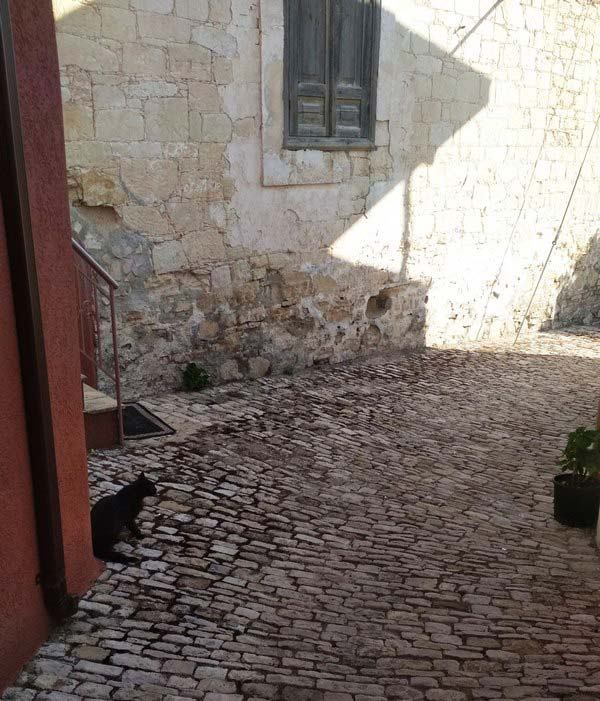 Кипр-деревня-Васа