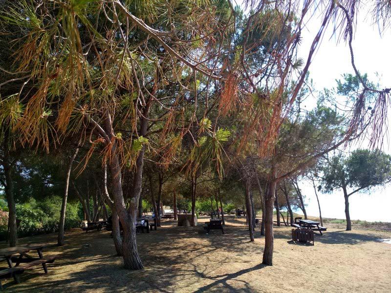 северный-берег-Кипра
