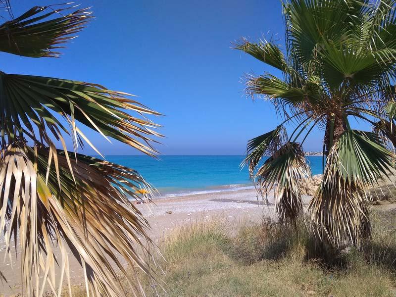 Blue-Coral-Beach