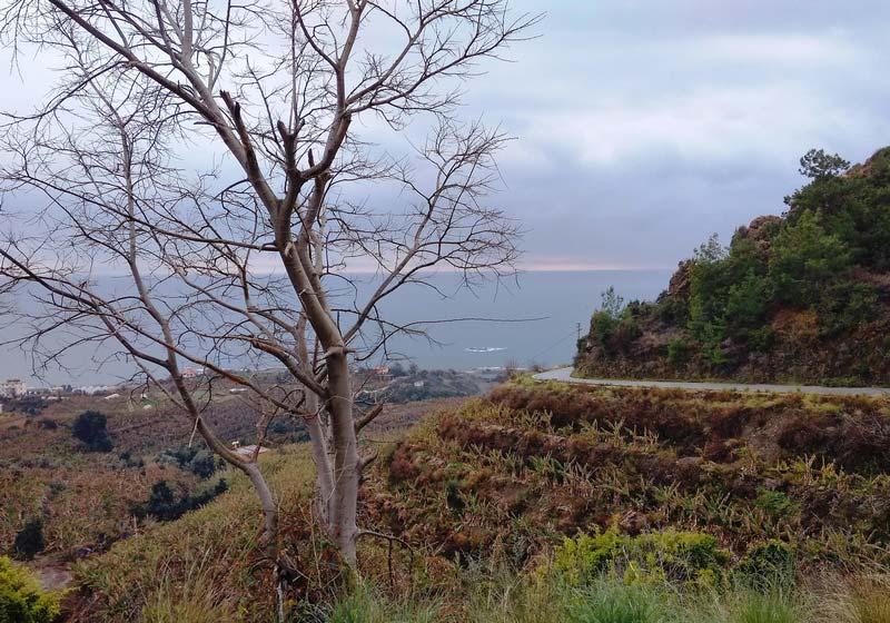 горные-дороги-Турции