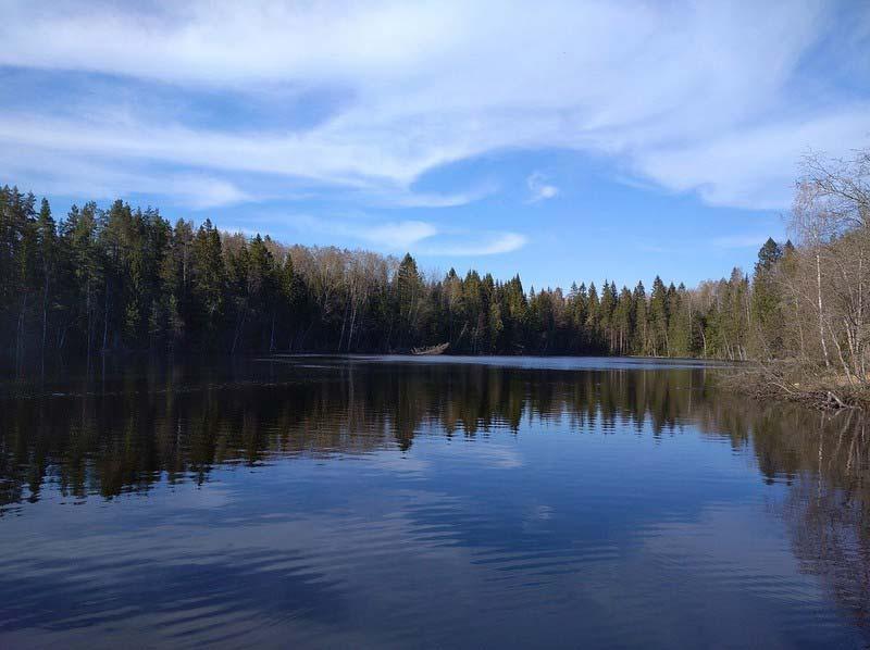 глэмпнг-лесок-озеро