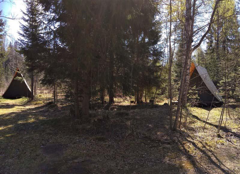 глэмпинг-лесок-домики